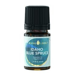 Idaho Blue Spruce Young Living Essential Oil