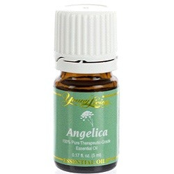 Angelica Young Living Essential Oil