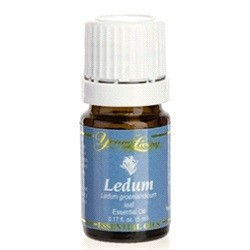 Ledum Young Living Essential Oil